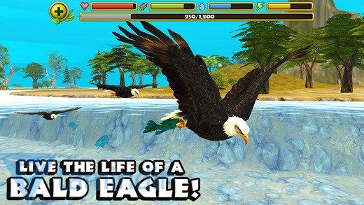 Eagle Simulator Ekran Görüntüleri - 4