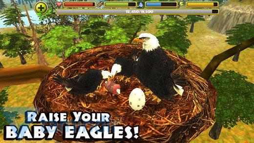 Eagle Simulator Ekran Görüntüleri - 3