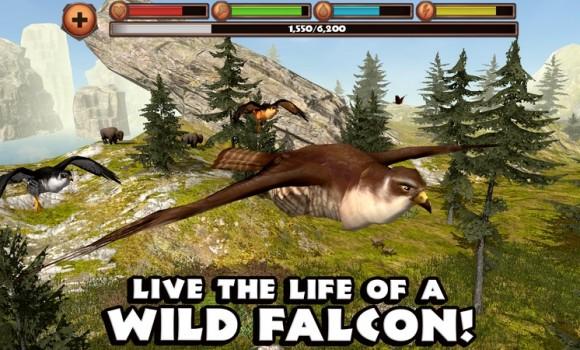 Falcon Simulator Ekran Görüntüleri - 6