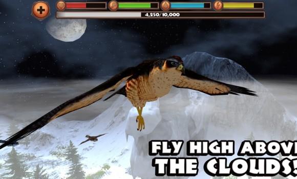 Falcon Simulator Ekran Görüntüleri - 2