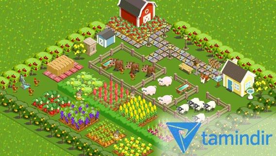 Farm Story Ekran Görüntüleri - 3