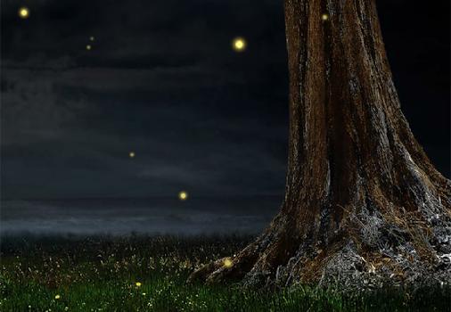 Fireflies Lockscreen Ekran Görüntüleri - 2