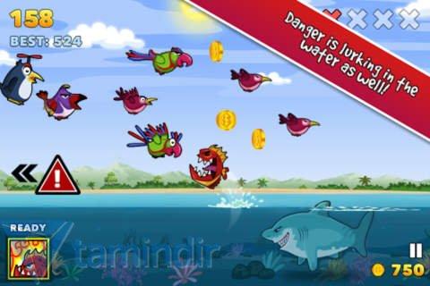Fish Fury Ekran Görüntüleri - 2