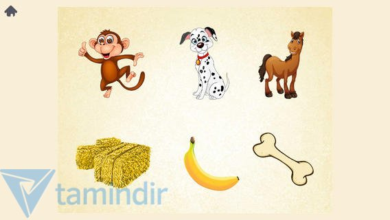 Montessori Ekran Görüntüleri - 1
