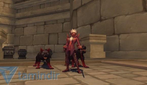 Ragnarok Online 2 Ekran Görüntüleri - 1
