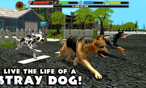Stray Dog Simulator Ekran Görüntüleri - 2