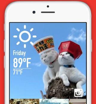 WeatherGIF Ekran Görüntüleri - 2