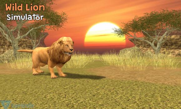 Wild Lion Simulator 3D Ekran Görüntüleri - 4