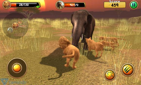 Wild Lion Simulator 3D Ekran Görüntüleri - 1