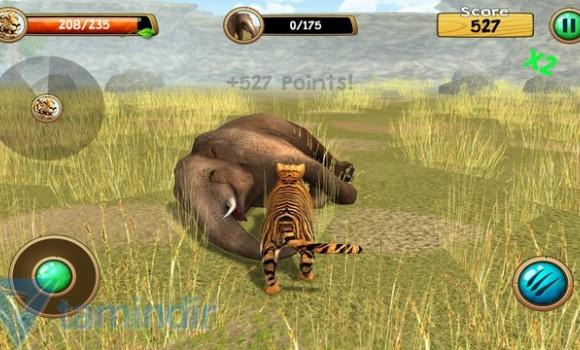 Wild Tiger Simulator 3D Ekran Görüntüleri - 1