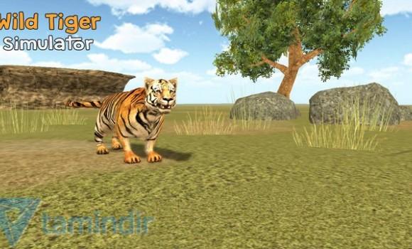 Wild Tiger Simulator 3D Ekran Görüntüleri - 2