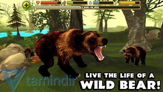 Wildlife Simulator: Bear Ekran Görüntüleri - 4