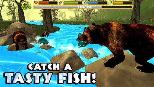 Wildlife Simulator: Bear Ekran Görüntüleri - 3