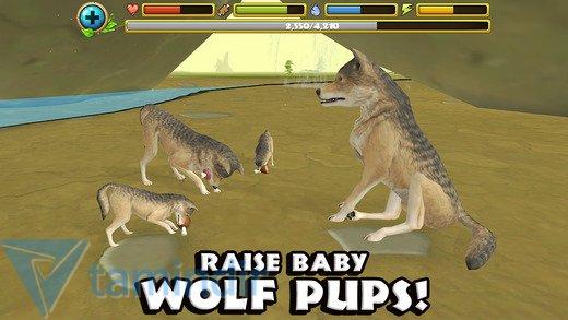 Wildlife Simulator: Wolf Ekran Görüntüleri - 1