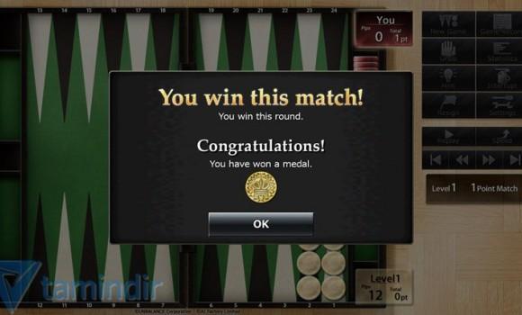 Backgammon Intelligence Ekran Görüntüleri - 2