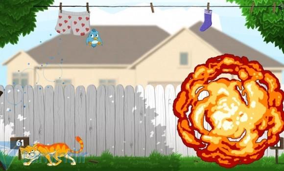 Cat's Catch Ekran Görüntüleri - 2
