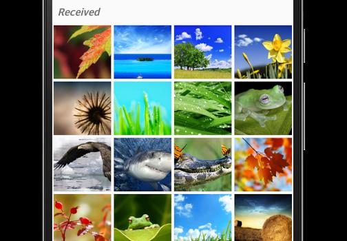 Cleaner for WhatsApp Ekran Görüntüleri - 3