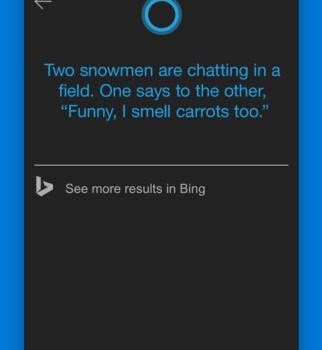 Cortana Ekran Görüntüleri - 1