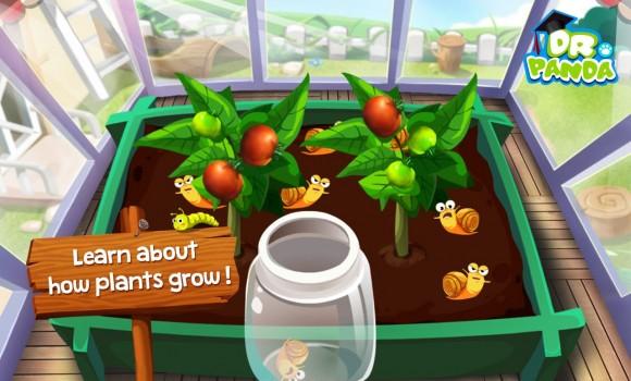 Dr. Panda Veggie Garden Ekran Görüntüleri - 3