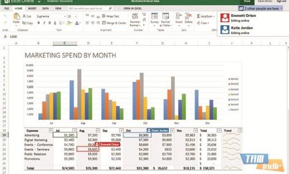 Excel Online Ekran Görüntüleri - 1