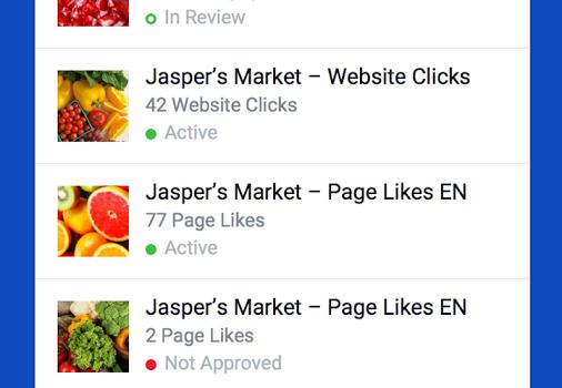 Facebook Ads Manager Ekran Görüntüleri - 5