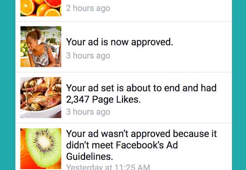 Facebook Ads Manager Ekran Görüntüleri - 2