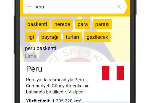 Fenerbahçe Yandex Ekran Görüntüleri - 2