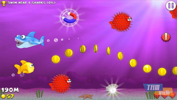 Fishy Rush Ekran Görüntüleri - 2