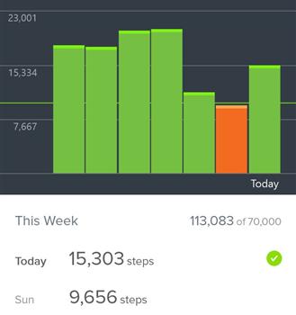 Fitbit Ekran Görüntüleri - 1