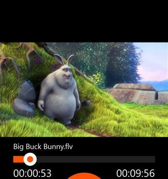 FLV Player Ekran Görüntüleri - 3