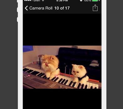GIF Toaster Ekran Görüntüleri - 4