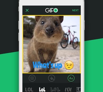 GIFO Ekran Görüntüleri - 2