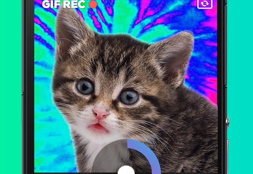 GIPHY CAM. Ekran Görüntüleri - 3