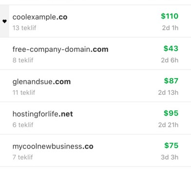 GoDaddy Investor Ekran Görüntüleri - 3