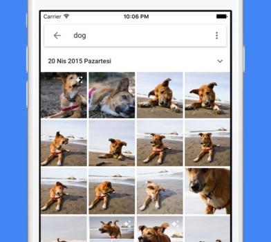 Google Photos Ekran Görüntüleri - 3