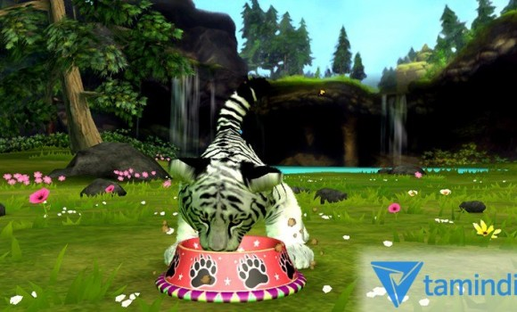 Kinectimals Unleashed Ekran Görüntüleri - 2