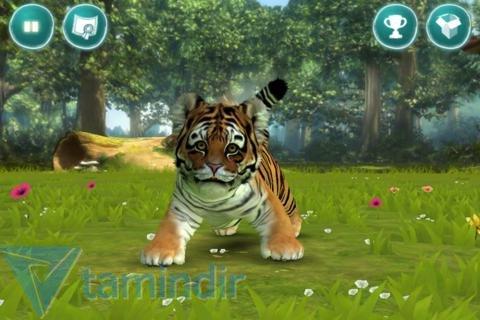 Kinectimals Ekran Görüntüleri - 3