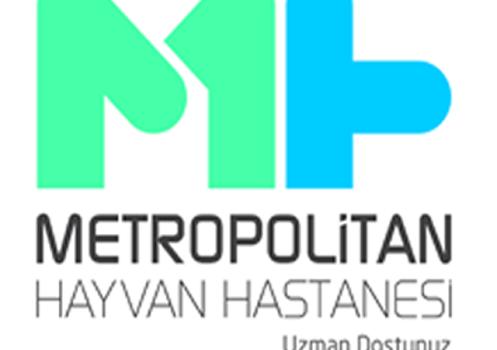 Metropolitan Ekran Görüntüleri - 1