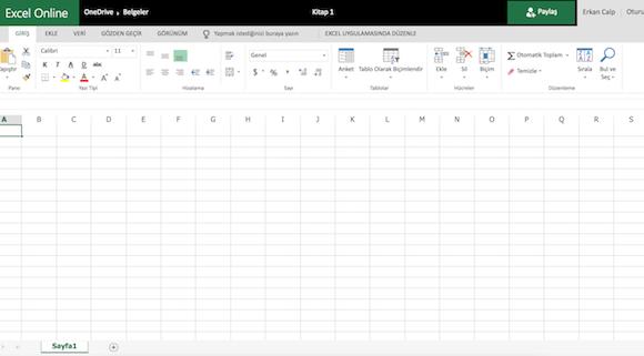 Microsoft Excel Online Ekran Görüntüleri - 1