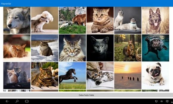 My Start Wallpapers Ekran Görüntüleri - 5