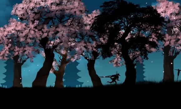 Ninja Arashi Ekran Görüntüleri - 5