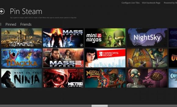 Pin Steam Ekran Görüntüleri - 4