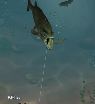 Rapala Fishing Ekran Görüntüleri - 1