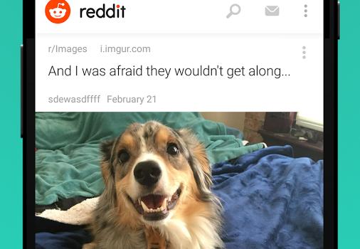 Reddit Ekran Görüntüleri - 3