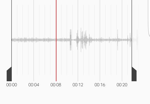 Samsung Voice Recorder Ekran Görüntüleri - 3