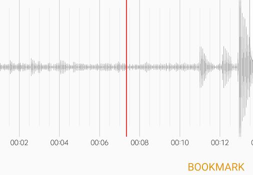 Samsung Voice Recorder Ekran Görüntüleri - 2