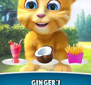 Talking Ginger 2 Ekran Görüntüleri - 4