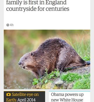 The Guardian Ekran Görüntüleri - 5