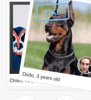 Tindog Ekran Görüntüleri - 4
