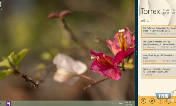 Torrex Lite Ekran Görüntüleri - 3